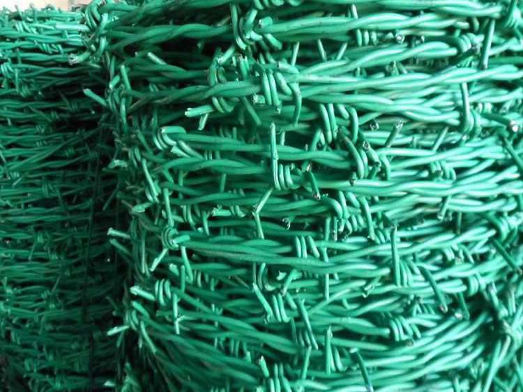 刺绳必威体育备用网 (2)